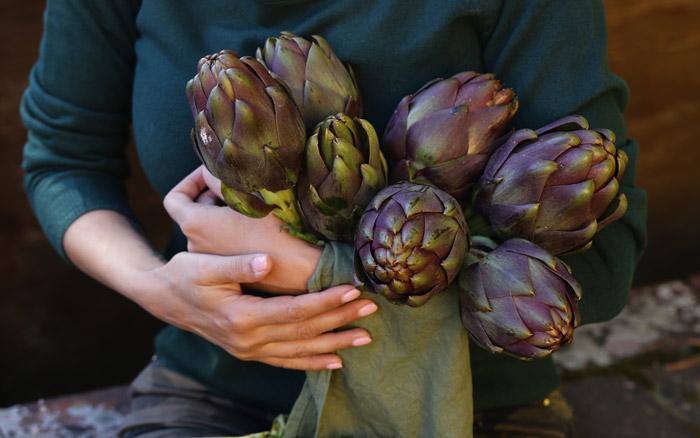 Natural purple vegetables artichokes